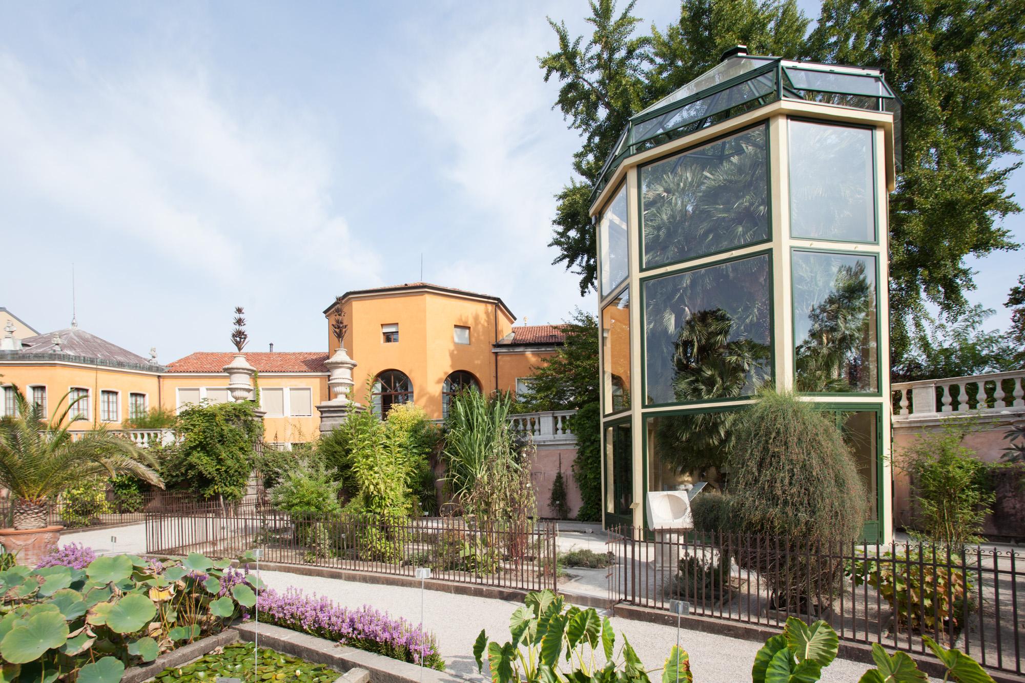 Palma di Goethe, una nuova serra per valorizzarla | Giuseppe Zaccaria